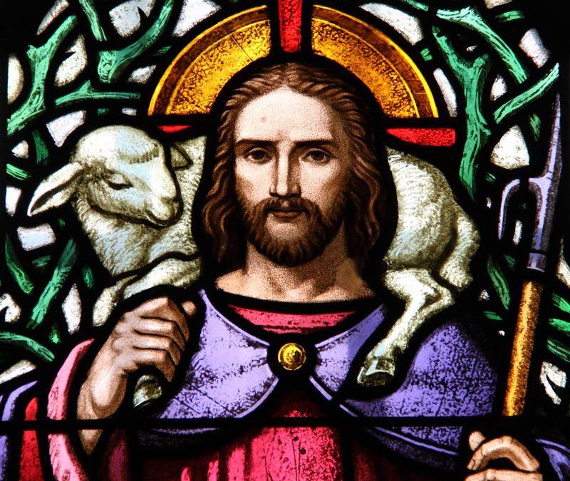 I AM the Good Shepherd – Part 5 of 8