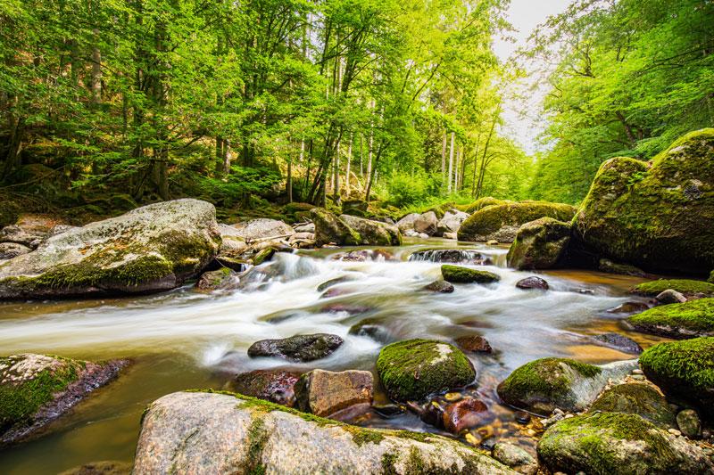 Peace Like A Gentle River